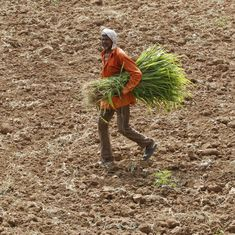 Centre approves Rs 795-crore drought relief fund for farmers in Karnataka