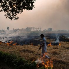 Air pollution: Green tribunal asks Centre, state governments to solve the stubble burning problem