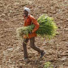 किसानों को न्यूनतम समर्थन मूल्य दिलाने के लिए मोदी सरकार 15,000 करोड़ रुपये खर्च करेगी