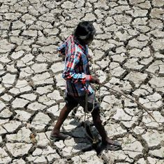 With 23 of Karnataka 30 districts declared drought-hit, farmers are selling precious cattle