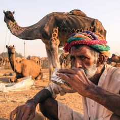 The last straw: Herders say new animal market rules will drive the camel to extinction