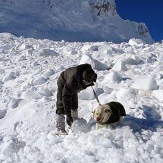 Ladakh: Two Indian Army personnel killed in avalanche in Siachen glacier