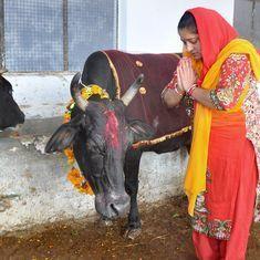 हैदराबाद हाई कोर्ट के जज ने गाय को 'पवित्र राष्ट्रीय संपदा' बताया, कहा - गाय ईश्वर का विकल्प है