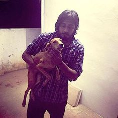 The dog that was thrown off a Chennai building has been found alive