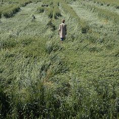 कृषि संकट के बीच फसल बीमा कंपनियों को 10 हजार करोड़ रु के मुनाफे सहित आज की प्रमुख सुर्खियां