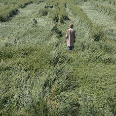 किसानों की आत्महत्या के मामले एक साल के भीतर 40 फीसदी बढ़ गए हैं
