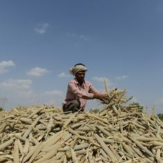 India's farming sector is facing a private equity drought