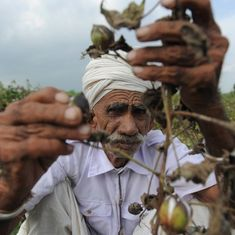 Gujarat is offering 0%-interest loans to farmers but its record on long-term support is patchy