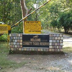 उत्तराखंड के कॉरबेट नेशनल पार्क से जुड़े मसले पर भारतीय वन्यजीव संस्थान बचाव में क्यों है?