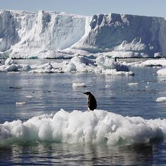 Climate change: Melting Arctic sea ice at eighth-lowest level on record