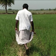 In Tamil Nadu, a court case has highlighted misuse of farm land – and brought real estate to a halt