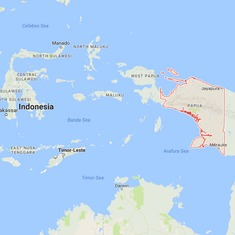 Indonesia: Wreckage of cargo plane with four crew members found in Papua's mountain slope
