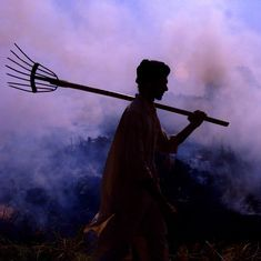 Punjab seeks new technology to cut down on paddy burning, declares award of more than Rs 7 crore