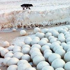 साइबेरिया में समुद्र किनारे इकट्ठा हो रहे बर्फ के इन गोलों का रहस्य क्या है?