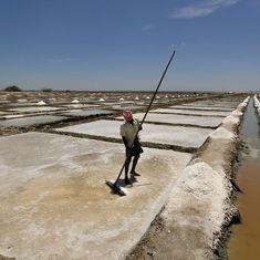 Rumours of salt shortage trigger panic buying in Delhi and Uttar Pradesh