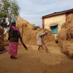 Only rice, no vegetables for an Adivasi village in Maharashtra after demonetisation