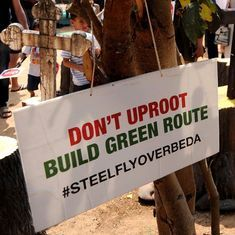 Even scientific studies show that Bengaluru needs its trees more than a steel flyover