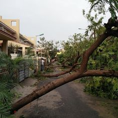 Cyclone Vardah: Chennai's Corporation was prepared for floods, but not such intense winds