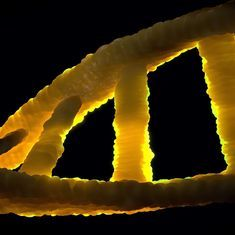 Scientists correct deadly genetic mutation in human embryos for the first time