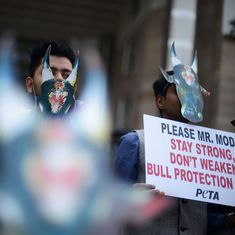 The big news: Activists say ordinance on jallikattu would be unconstitutional, and 9 other stories