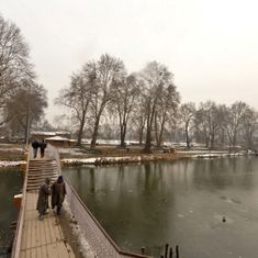 Cold wave: Srinagar records coldest night in 5 years, Patna's temperature drops to season's lowest