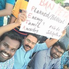 'Any move for justice has its opposition': PETA reacts to being targetted by jallikattu supporters