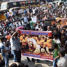 The big news: Jallikattu will be organised in a day or two, says CM, and nine other top stories