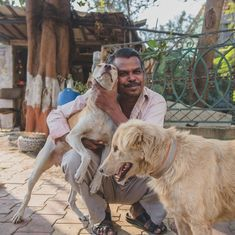 The heart-warming story of a Mumbai cobbler whose love for dogs landed him in debt