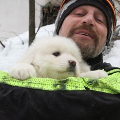 Watch: Three puppies rescued five days after avalanche in Central Italy