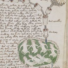 Watch: Is the Voynich manuscript the most mysterious book in the world?
