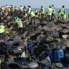 Chennai oil spill: Green tribunal seeks replies from Centre, Tamil Nadu to plea seeking compensation
