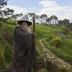 Newly discovered amoeba named after Gandalf from 'The Lord of The Rings'