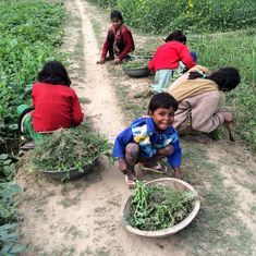 In a village in Uttar Pradesh, food is always on the minds of its residents