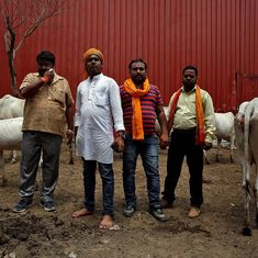 Religious tolerance deteriorated in India in 2016, cow vigilantes harassed minorities: US report