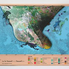 Why a Sri Lankan artist's redrawn maps are gaining ardent admirers in India