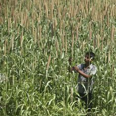 Farm crisis: Why should Bharat have to feed India at its cost?