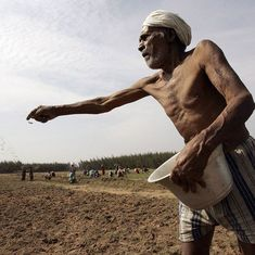 क्यों फसल खरीद पर मोदी सरकार का ताजा ऐलान किसानों के साथ मजाक लगता है