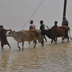 In pictures: Torrential monsoon rains submerge large parts of Tripura