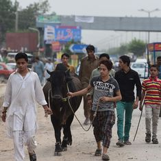 Pakistan's youth bulge could be a demographic dividend, but is it a ticking time bomb instead?