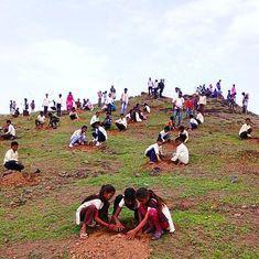 मध्य प्रदेश ने 12 घंटे में 6.6 करोड़ पेड़ लगाकर नया विश्व रिकॉर्ड बनाया