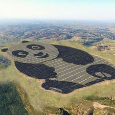 China's latest solar power plant is shaped like a panda