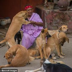 Video: Meet Pratima Devi, a street hawker who has dedicated her life to stray dogs