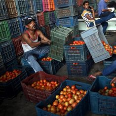 Armed security guards for tomatoes in Indore as prices touch Rs 100 per kg in several cities