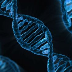 Introducing 'dark DNA' – the phenomenon that could change how we think about evolution