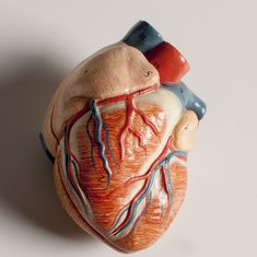 Why medical science needs to return to viewing the heart as an emotional object