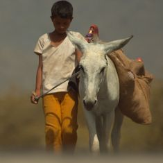 In first film 'Bhasmasur', rural poverty and donkey love