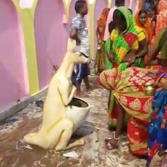Watch: Why were the women in this village worshipping a kangaroo-shaped dustbin?