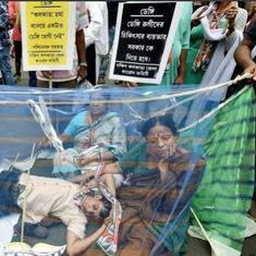 Dengue politics in Bengal: A tiny insect has turned into a pesky problem for Mamata Banerjee
