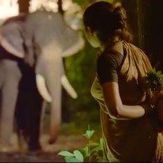 Elephants are among the most lovable creatures, says 'Haathi Mere Saathi' director Prabhu Solomon