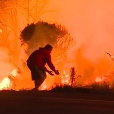 Watch: The extraordinary moment a man rescues a wild rabbit from the blazing fires in California